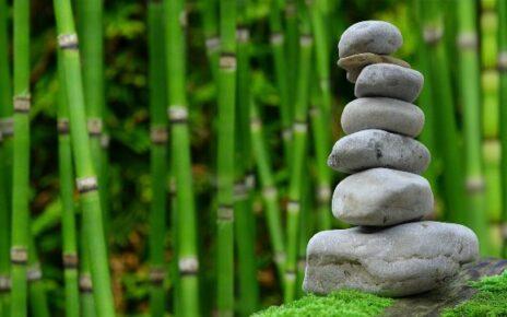 Care sunt avantajele amenajării locuințelor cu piatră albă decorativă